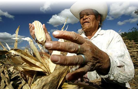 Foto: Blog: movimientos campesinos argentinos
