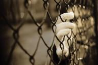 penas y penalidades